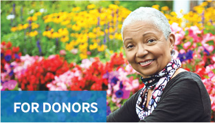 Fairfield County's Community Foundation: For Donors